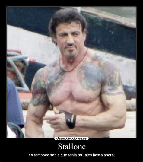 Stallone Meme - forever stallone tattoos pictures to pin on pinterest