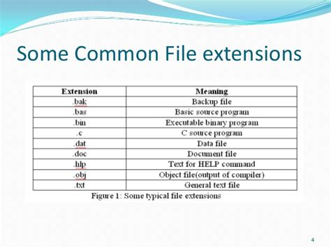 video format extensions common file management