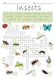 Crossword Answer Garden Pests Worksheet Insects Crossword Puzzle