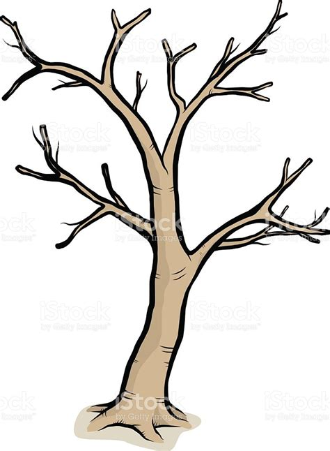 bare branch tree a drawing of a tree with bare branches stock vector