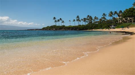 maui real estate courtney m brown realtor island