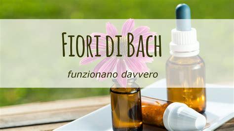 i fiori di bach funzionano fiori di bach funzionano davvero