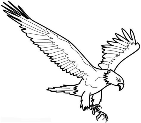 coloring sheet of eagle eagle bird coloring pages to printable
