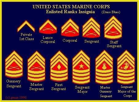 marine corps ranks marine corps ranks marine corps things