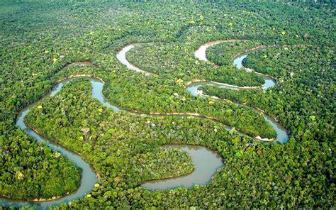 Hängesessel Amazonas by Post Alerta Roja En El Amazonas