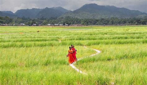 dhemaji tourism travel guide  attractions tours