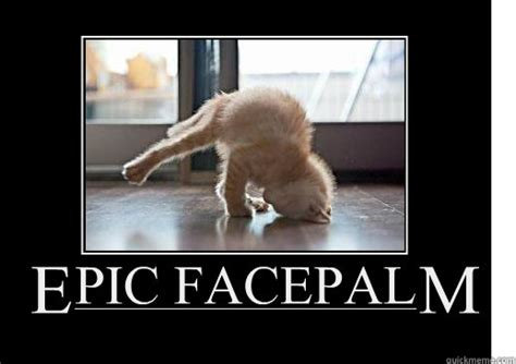 Face Palm Meme - epic facepalm lolcat