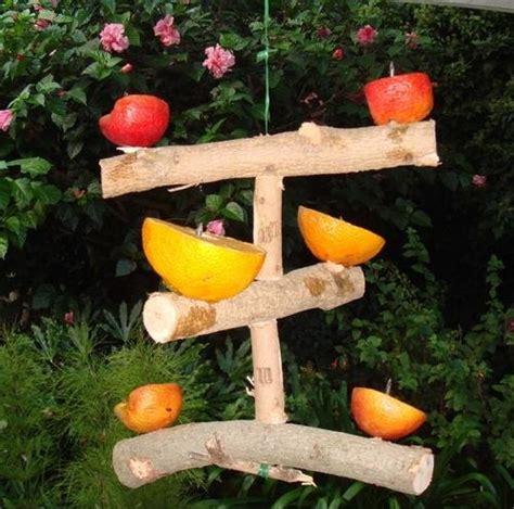 fruit bird feeder gardening pinterest
