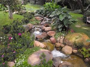 Ideas For Rock Gardens Rock Garden Ideas For Your Lovely House Midcityeast