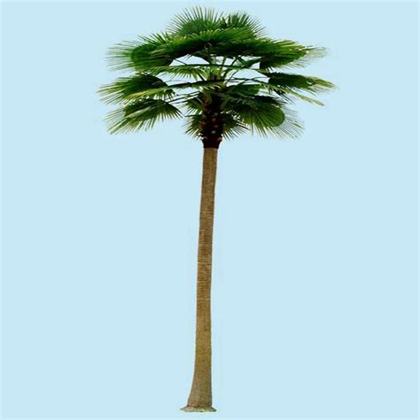 lighted trees lowes professional lighted palm tree lowes buy lighted palm