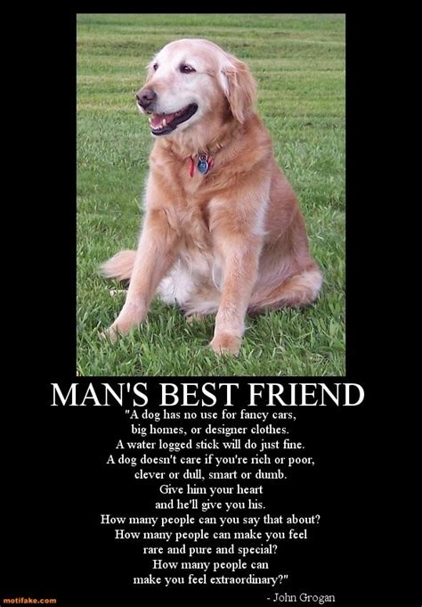 Man is a woman's best friend wine glass