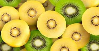 f prausnitzii supplement gold kiwi novel prebiotic could reduce risk of