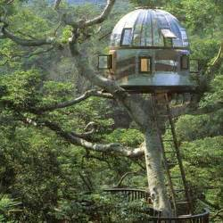 tree houses by pete nelson and design