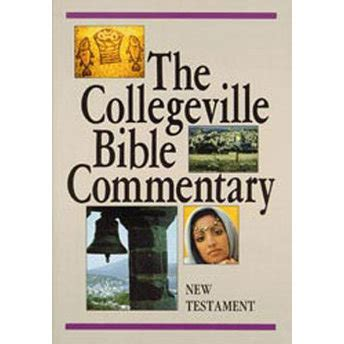 new collegeville bible commentary one volume hardcover edition books the collegeville bible commentary paperback new test