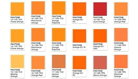 persimmon color persimmon color paint color persimmon persimmon color