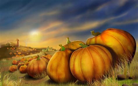 pumpkin background pumpkins with fall leaves royalty free stock p 2259 hd