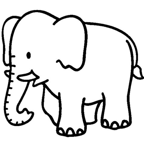 coloring pages of animals easy jungle animal coloring pages pre k 3 pinterest