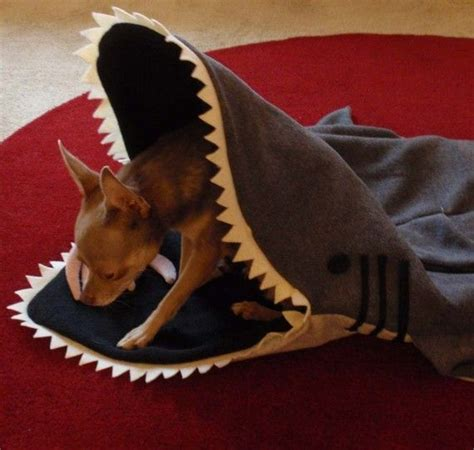 shark dog bed dog bed blanket simon the shark petcosy silly pet