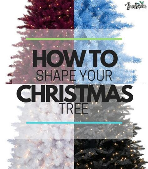 how to shape a christmas tree how to shape your tree treetopia