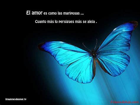 imagenes de mariposas para wasap imagem perfil whatsapp imagens whatsapp