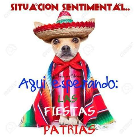 imagenes chistosas mexicanas 145 best images about frases mexicanas on pinterest