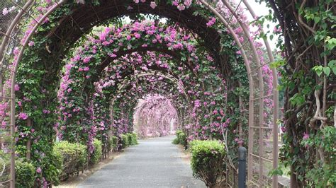 Welby Gardens by Welby Gardens A Paradise For All Gardeners