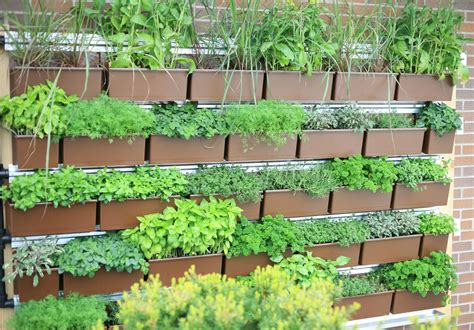 LiveWall®, the Planted Wall System Designed in Harmony