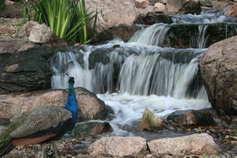 Aquascape Waterfall by Pin By Aquascape Inc On Waterfalls