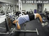 bench press exrx lever decline bench press