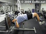 exrx bench press lever decline bench press