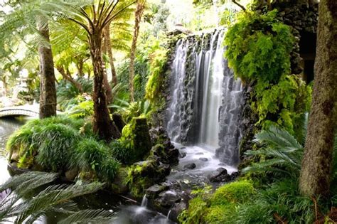what time does the botanical gardens the most beautiful botanical gardens in madeira