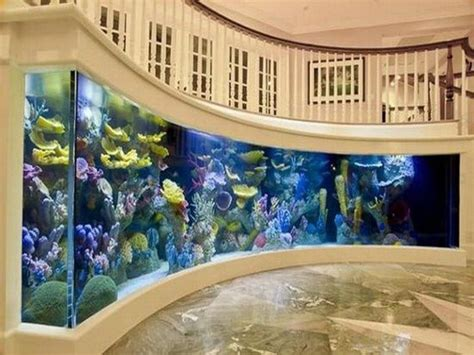 fish tank decoration at home 12 cool fish tanks designs