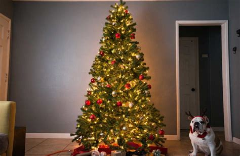 b and q best christmas trees the best artificial tree of 2018 your best digs