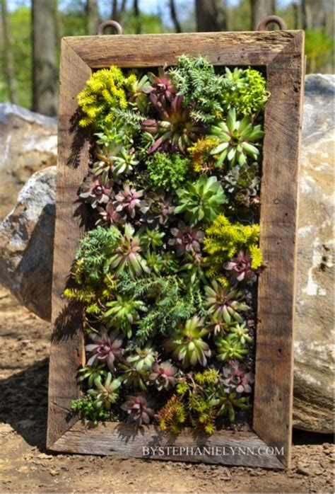 how to make a beautiful vertical succulents garden do it