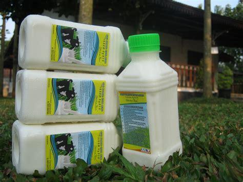 Jual Bibit Kambing Di Tangerang jual jual kambing murni cair di tangerang serpong