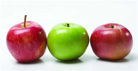 Apple To Apple | breeding healthier apples agriculture and food