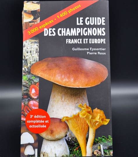 france le guide 9782067223769 le guide des chignons france et europe