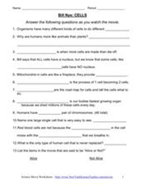 Bill Nye Chemical Reactions Worksheet Answers by Bill Nye Food Web Worksheet Motorcycle Review And Galleries