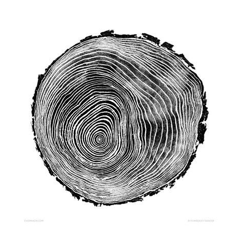 tree ring signed scots pine print tree rings art prints t