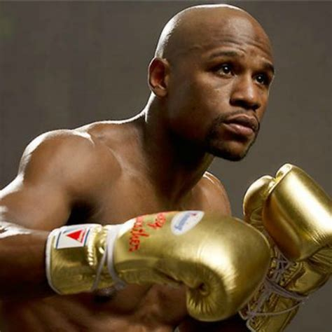 money the and fast times of floyd mayweather books floyd mayweather gets indian tiger as early