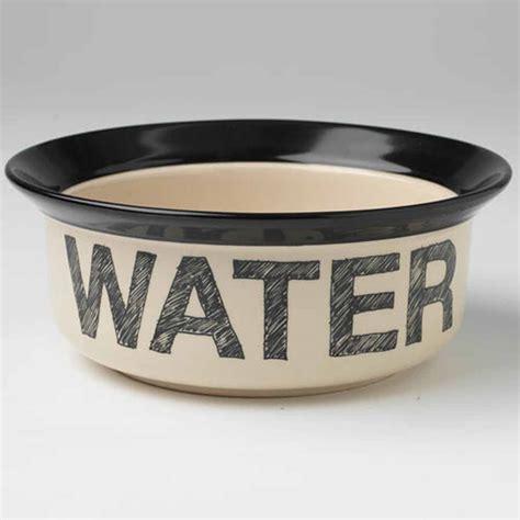 water bowl pooch basics bowl water baxterboo