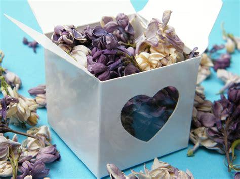 Bloom Box Purple Preserved Flower Uk 10 X10 Cm Beautiful freeze dried lilac petals dried flowers daisyshop
