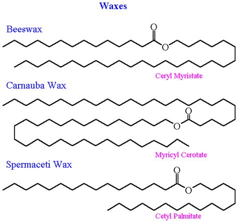 wax types diagram wax molecule pictures to pin on pinsdaddy