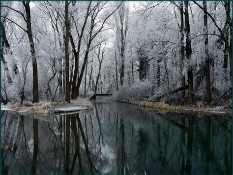 imagenes del invierno graciosas fondos de pantalla estaciones del a 241 o invierno nieve