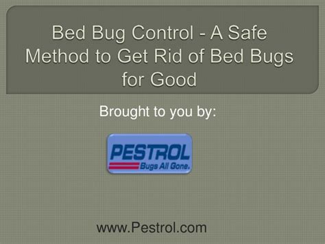 get rid of bed bugs for good bed bug control nyc a safe method to get rid of bed bugs