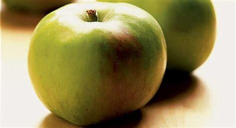 bramley apple bbc good food