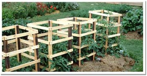 build tomato cage pdf diy how to build wooden tomato cages