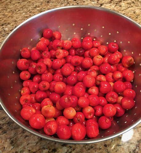 what a difference cheerfulmonk com cherries cheerfulmonk com