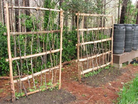 Garden Allotment Ideas 109 Best Images About Putting In A Garden On Pinterest Gardens Raised Beds And Chicken Wire