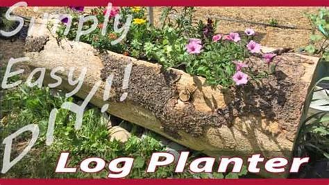 Diy Log Planter by 17 Best Images About Organize On